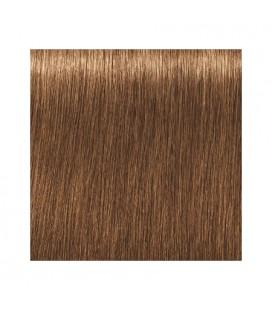 Краска для волос 7-450 Schwarzkopf Igora Royal Absolutes Средне-русый бежевый золотой 60 мл