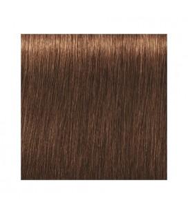 Краска для волос 6-460 Schwarzkopf Igora Royal Absolutes Темно-русый бежевый шоколадный 60 мл