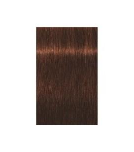 Краска для волос 5-70 Schwarzkopf Igora Royal Absolutes Светло-коричневый медно-натуральный 60 мл