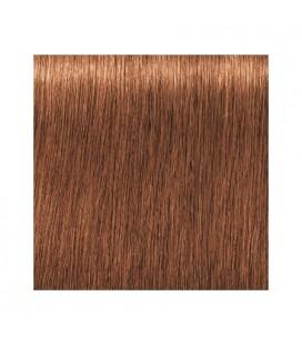 Краска для волос 7-710 Schwarzkopf Igora Royal Absolutes Средне-русый медный сандре 60 мл