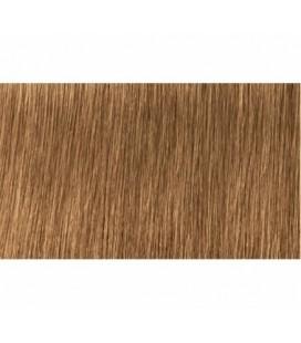 Крем-краска 7.30 Indola PCC Средний блонд золотистый натуральный 60 мл