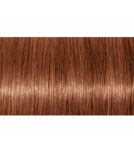 Крем-краска 7.38 Indola PCC Средний блонд золотистый шоколадный 60 мл